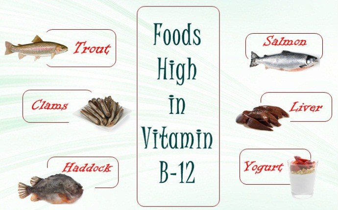 foods high in vitamin b 12