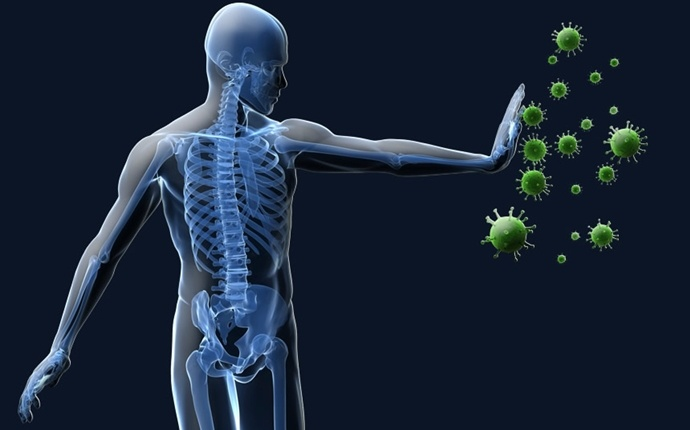 benefits of kale - strengthen your immune system