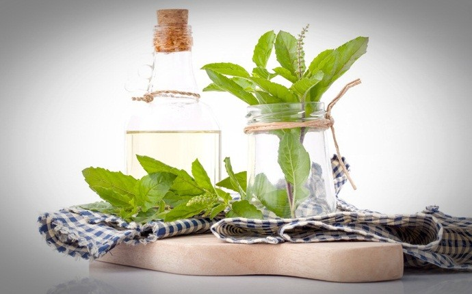 baking soda for dandruff - baking soda with holy basil