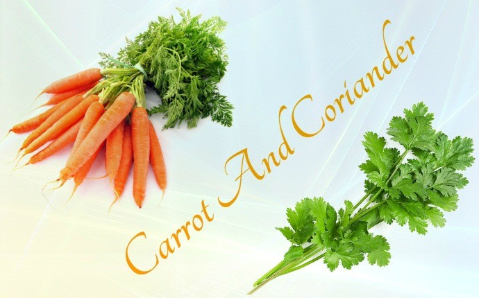 home remedies for chickenpox - carrot and coriander