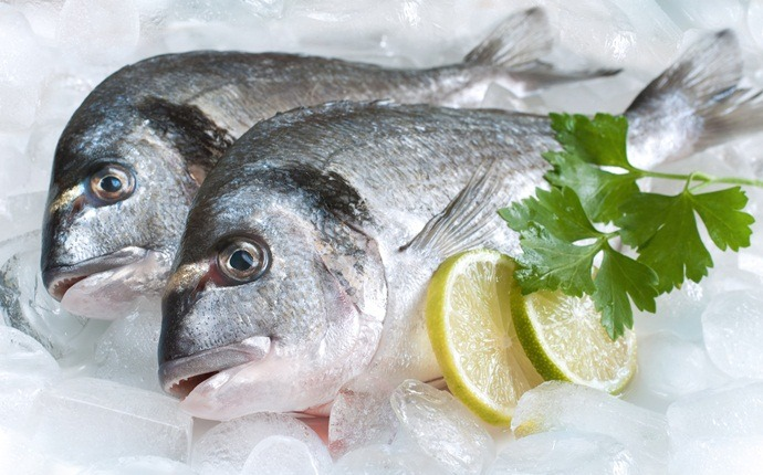 home remedies for wheezing - fish