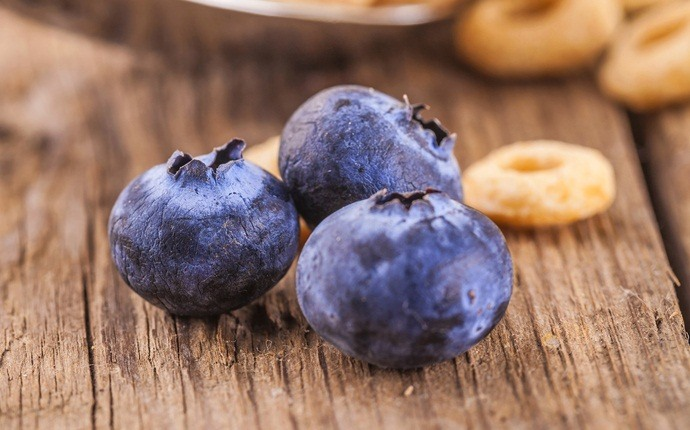 how to treat a hematoma - blueberries