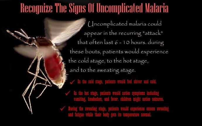 home remedies for malaria - recognize the signs of uncomplicated malaria