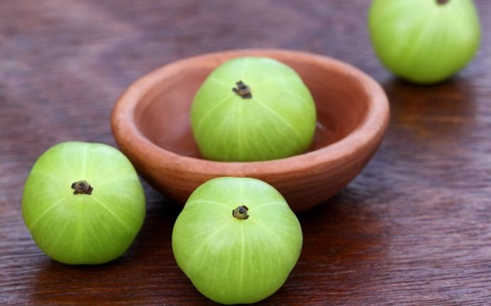 homemade hair oil -amla hair oil