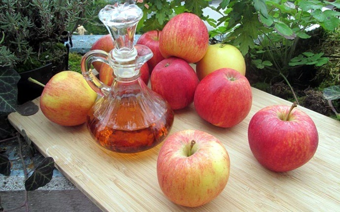 natural treatments to get rid of bed bugs - apple cider vinegar
