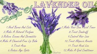 beauty benefits of lavender oil
