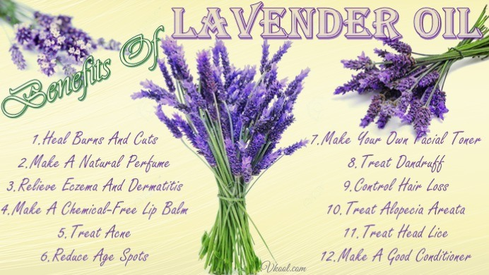 List Of 12 Beauty Benefits Of Lavender Oil