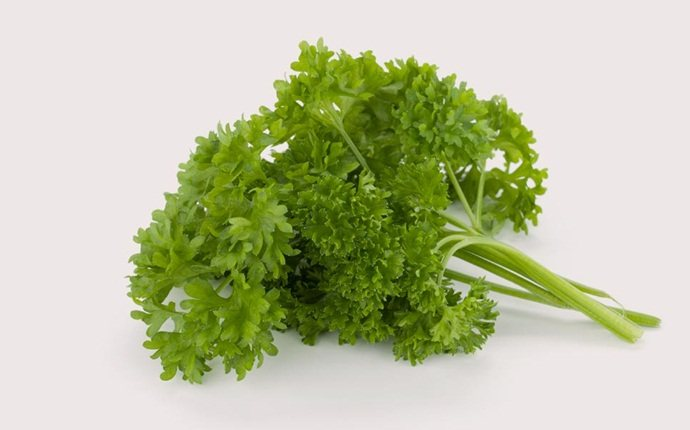 ginger for acne - mask of ginger and parsley