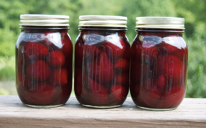 home canning recipes - pickled beets