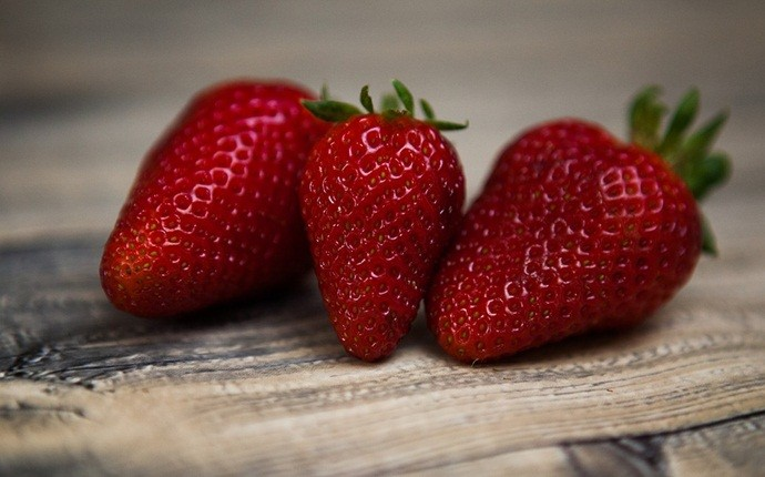 fruits with high water content - strawberries