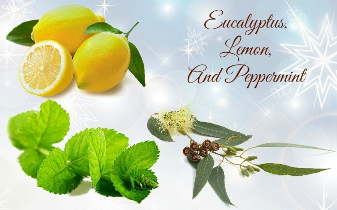 essential oils for swollen ankles - eucalyptus, lemon, and peppermint