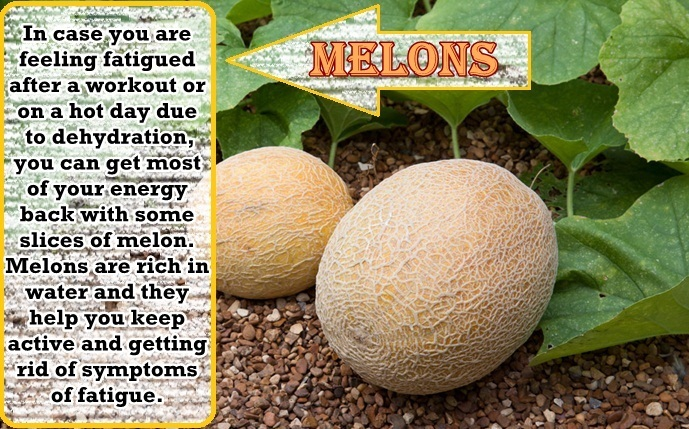 foods that fight fatigue - melons