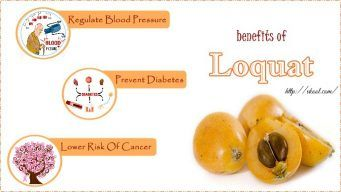 benefits of Loquat leaves