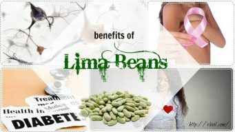 benefits of Lima beans while pregnant