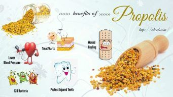 health benefits of propolis