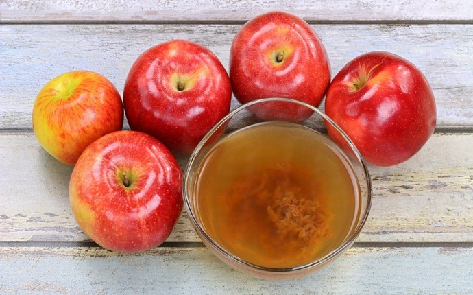 treatment for metabolic syndrome - apple cider vinegar