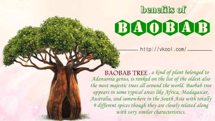 benefits of baobab fruits
