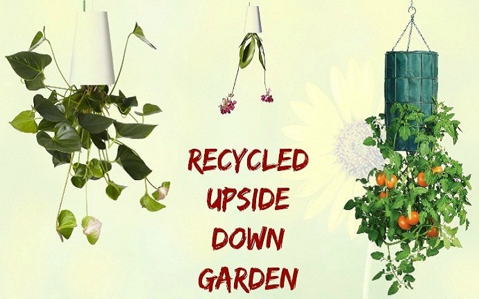 small garden design ideas - recycled upside down garden