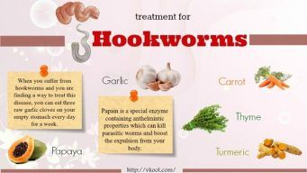 best treatment for hookworms