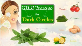 how to use mint leaves for dark circles