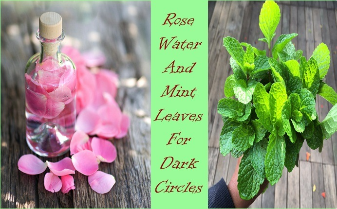mint leaves for dark circles - rose water and mint leaves for dark circles