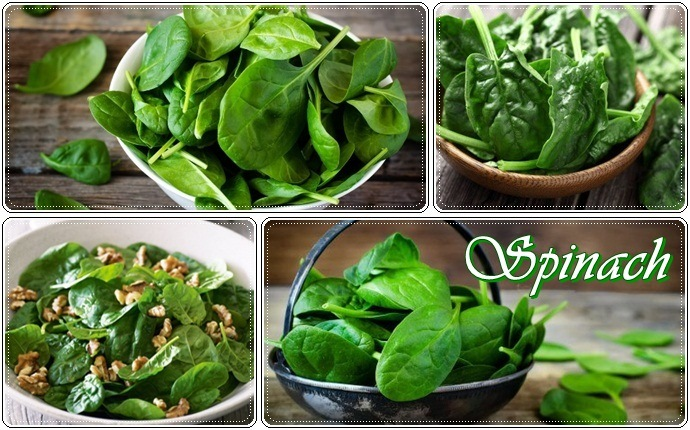 bone building foods - spinach