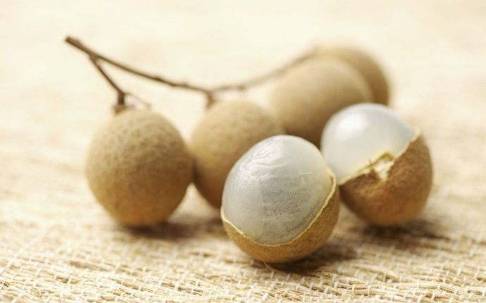 benefits of longan - storage