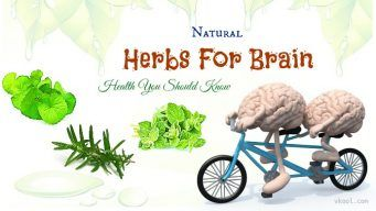 herbs for brain health