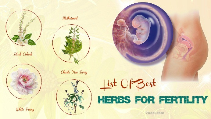 best herbs for fertility